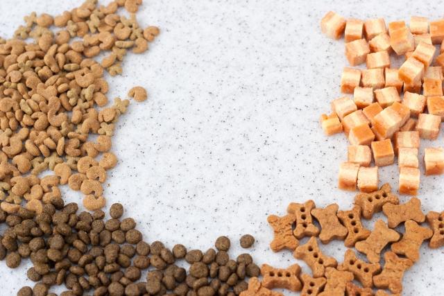 ロイヤルカナンのアレルギー療法食の特徴とは?種類やメリット、切り替え時の注意点を解説