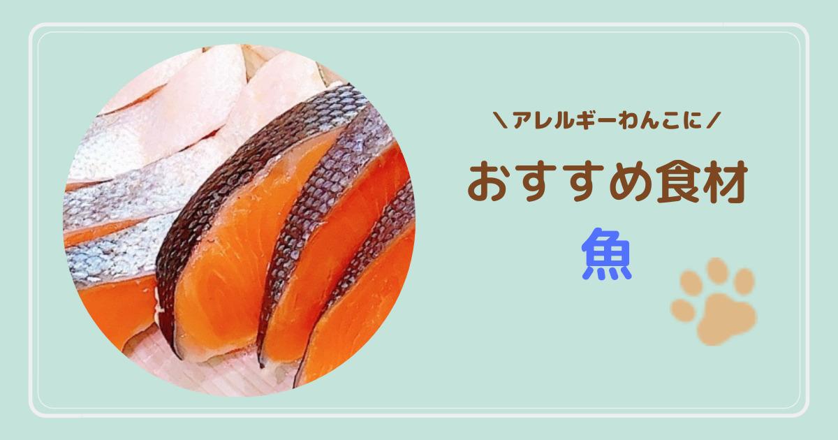 魚はアレルギー症状が起きにくい?犬に与えてはいけない魚はある?おすすめの魚系フードも