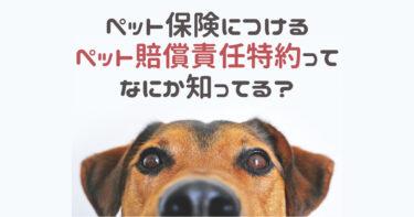 ペット賠償責任特約は必要か?犬同士・人に対する賠償など備えておきたいケースについて解説